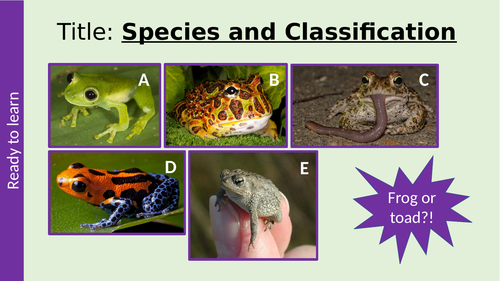 AQA Species, Courtship and Classification A Level Biology