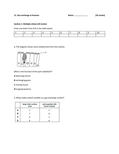 IGCSE Biology-Topic 11-Gas exchange in humans -Test and Mark scheme.