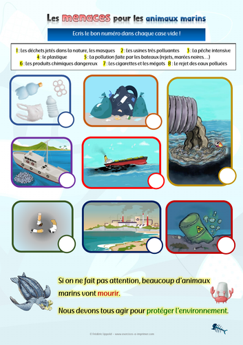 [French worksheet] Matching game: Threats to aquatic animals