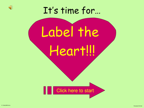 Heart Structure: Interactive Labelling Activity