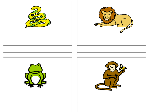 Dear Zoo Literacy Activities 3010539 on Name Writing For Pre K