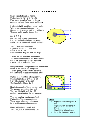 Cell Structure Rappoem Memory Aid By Jayneleigh78 Teaching