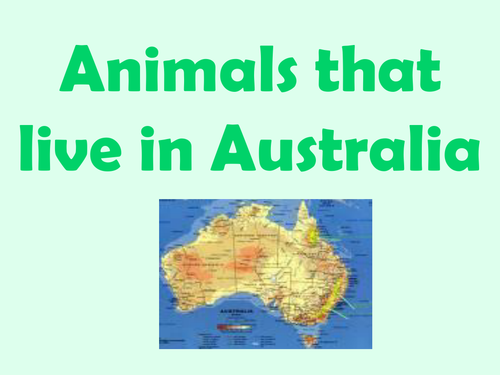 Map Of Australia Ks1.Australian Animal Facts Powerpoint By Jills12 Teaching Resources