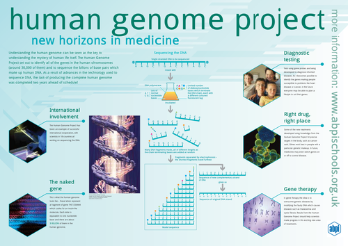 Human genome project poster