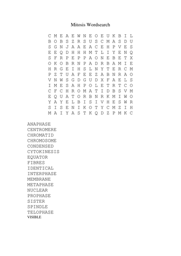 Mitosis wordsearch