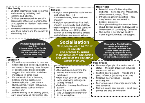 importance of culture in sociology