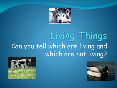 Living and non-living things - PowerPoint