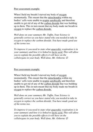 Peer assessment exemplar material