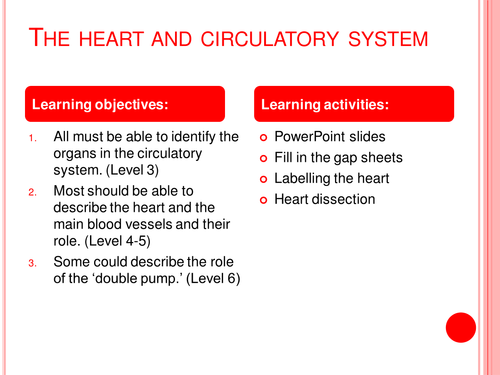 Parts of the heart diagram worksheet by gammaray teaching parts of the heart diagram worksheet by gammaray teaching resources tes ccuart Images