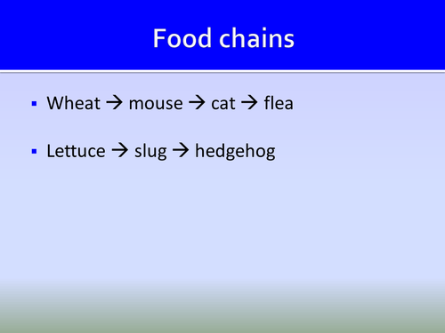Food Chains and Webs ppt HT