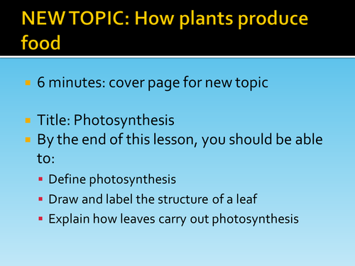 Leaf Structure + Photosynthesis HT