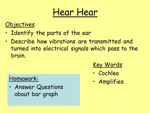 Parts Of The Ear And How We Hear Plan Worksheet By
