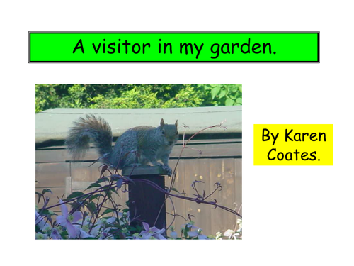powerpoint paperback- visitor in the garden
