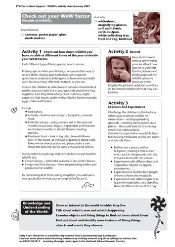 Wildlife activity sheet