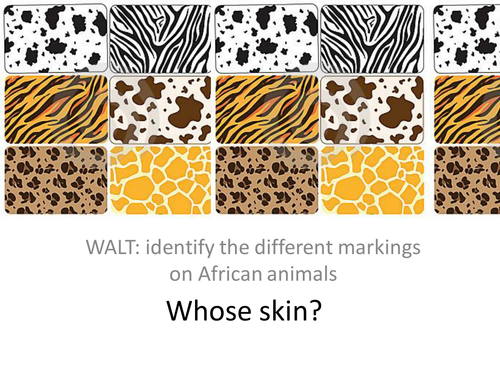 identify which animal each of the skin patterns be by kate2york teaching resources tes. Black Bedroom Furniture Sets. Home Design Ideas