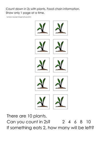 Plants: growth sequence/ parts/wheat/compost