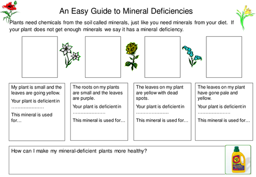 Plant minerals by TeachBiology Teaching Resources TES – Mineral Worksheet