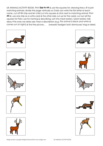 UK Animals activity book (made with Widgit CIP)