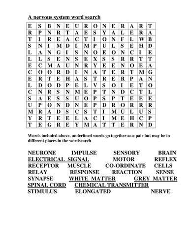 wordsearch for keywords connected to nerves by goldson1