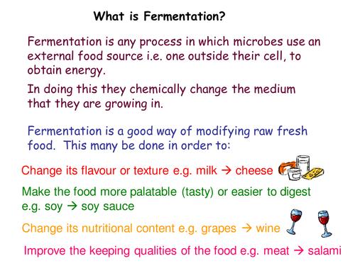 Fermentation by TeachBiology Teaching Resources Tes – Fermentation Worksheet