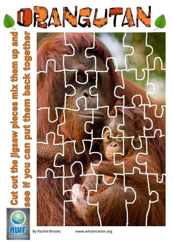Orangutan Jigsaw