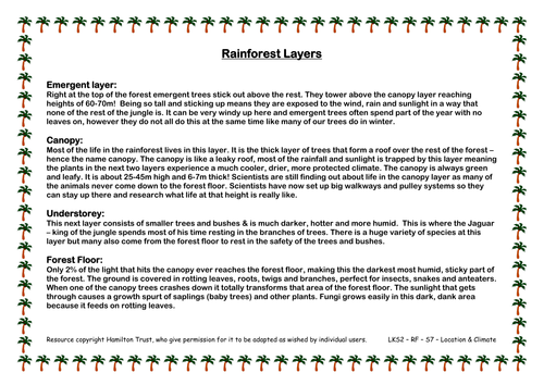 Rainforest Climates by HamiltonTrust Teaching Resources TES – Layers of the Rainforest Worksheet