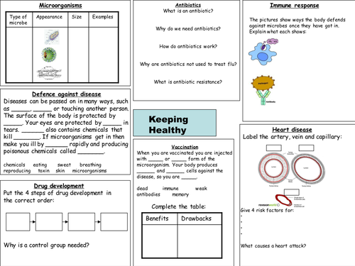 b2 keeping healthy revision worksheet by deb1977 teaching resources. Black Bedroom Furniture Sets. Home Design Ideas
