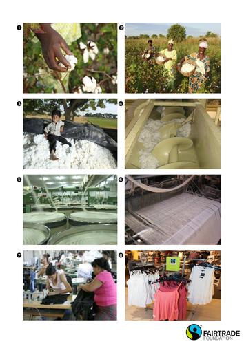 Investigating cotton - Ages 11+