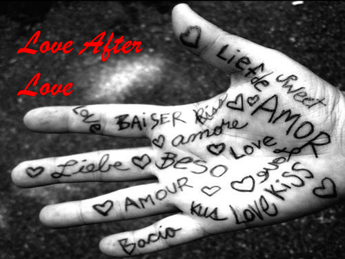 LOVE AFTER LOVE- Analysis