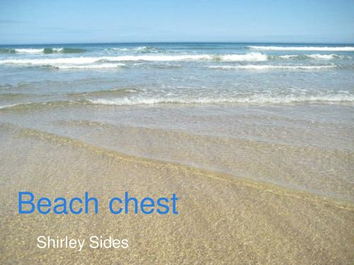 Beach chest