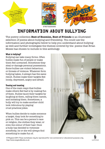 Bullying and Friendship by Wayland | Teaching Resources