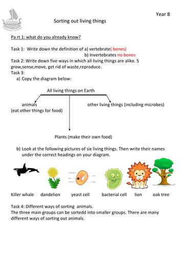 Invertebrates And Vertebrates By Myasin87 Teaching Resources