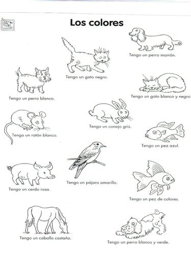 Los animales y los colores