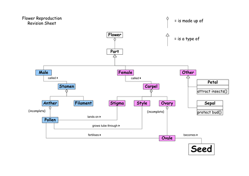 Flower Concept Map.Flowering Plant Reproduction By S Mawby Teaching Resources Tes