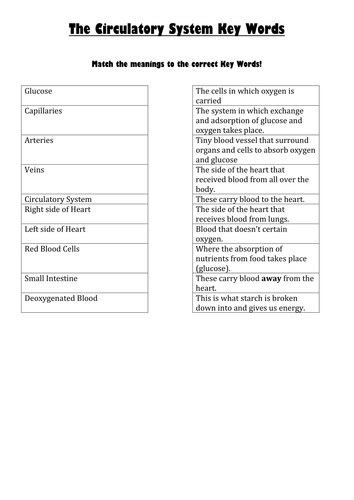 worksheets for ks3 respiration by jmistr10 teaching resources. Black Bedroom Furniture Sets. Home Design Ideas