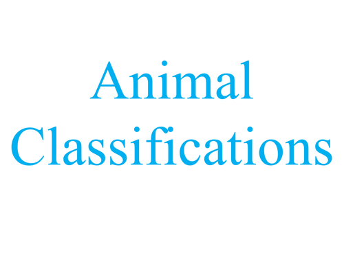 Animal Classifications by MaisieEmilie - Teaching Resources - Tes