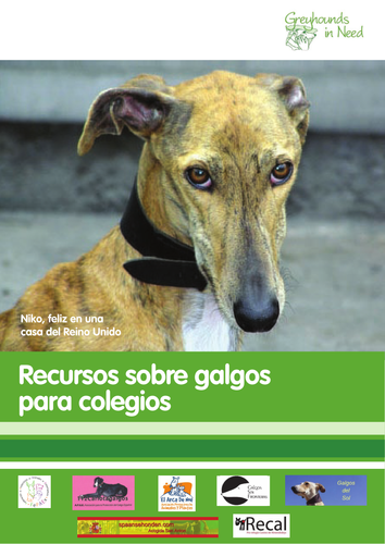 Galgo Schools Resource, Teacher Guidance (Spanish)