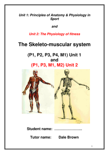 Level 3 Unit 1: Anatomy and Physiology Revision Posters by selpne ...