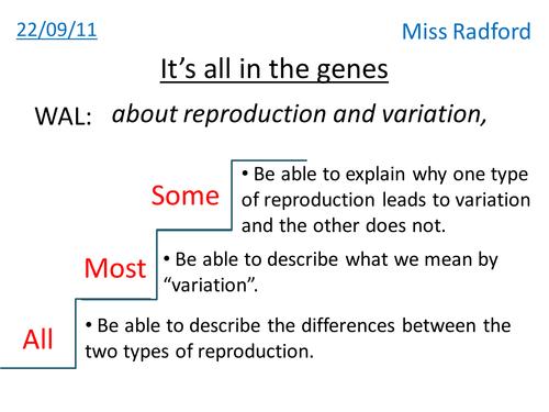 Genes and Variation by sophiecymru Teaching Resources TES – Patterns of Inheritance Worksheet