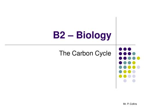 Biology B2 Revision (Part 5)