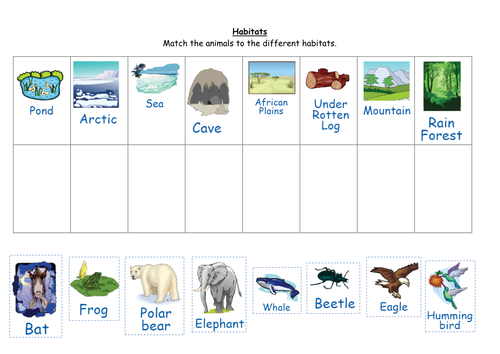 Match the animals to their habitats by ruthbentham Teaching – Animals and Their Habitats Worksheets Kindergarten