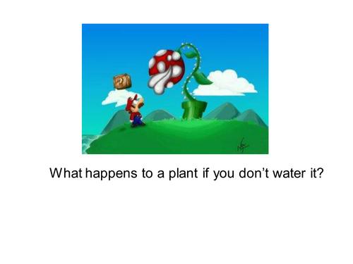 Osmosis (PowerPoint/Lesson Plan)