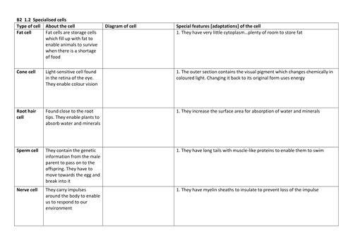 Cells Resources AQA B21 by HoppyHappyBunny Teaching Resources – Cell Worksheet