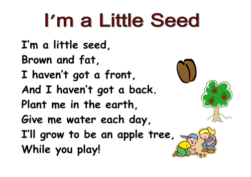 Themed Poems Ks1 Seeds And Plants By Kcoates Teaching