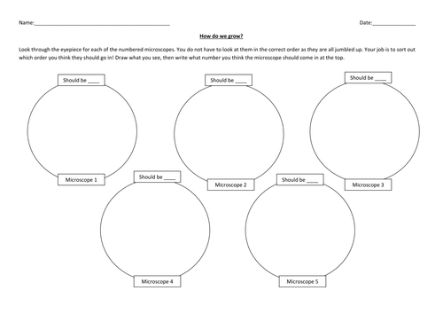 Cell division Year 7 by hannahradford Teaching Resources Tes – Cell Division Worksheet