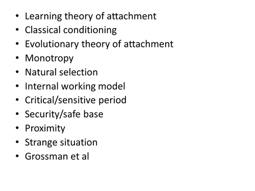 Activity for attachment theories