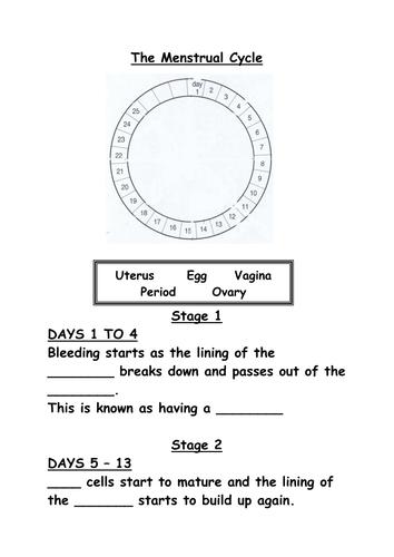 collection of menstrual cycle worksheet bluegreenish. Black Bedroom Furniture Sets. Home Design Ideas