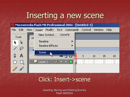 Flash MX2004 Adding, Ordering and Deleting Scenes