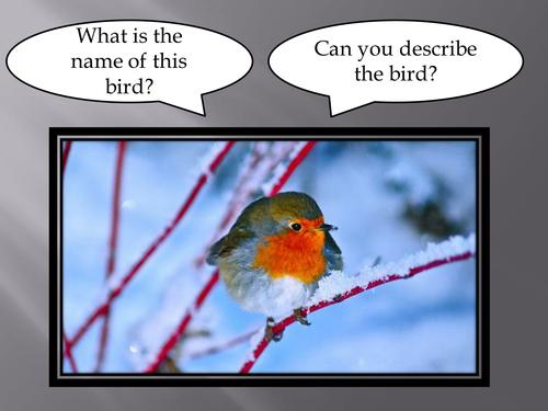Animals in winter - powerpoint