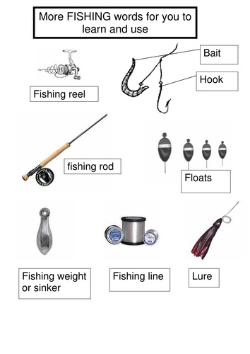 Creative writing fishing vocabulary and sentence c by for Basic fishing gear